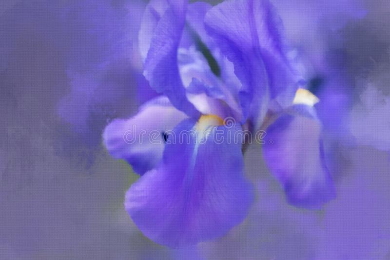 Iris abstrait avec l'effet painterly images stock