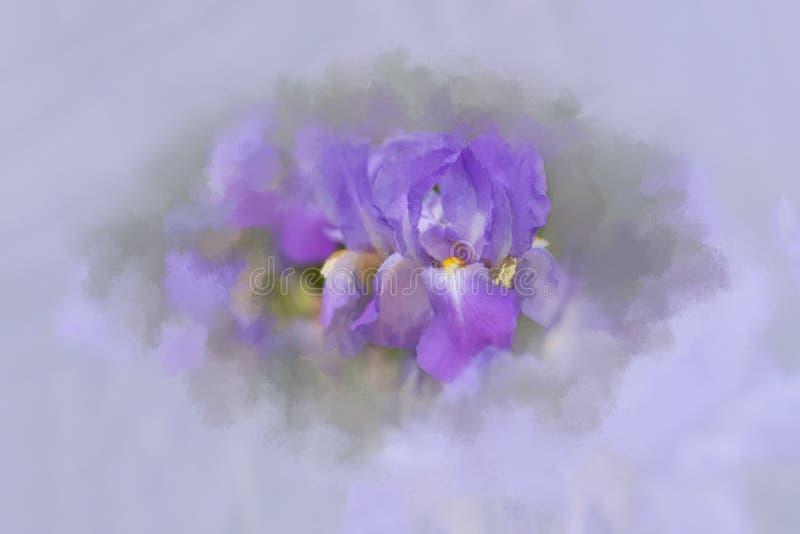 Iris abstrait avec l'effet painterly photographie stock libre de droits