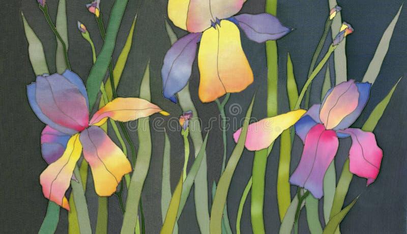 Download Iris on black background stock illustration. Illustration of design - 14240627
