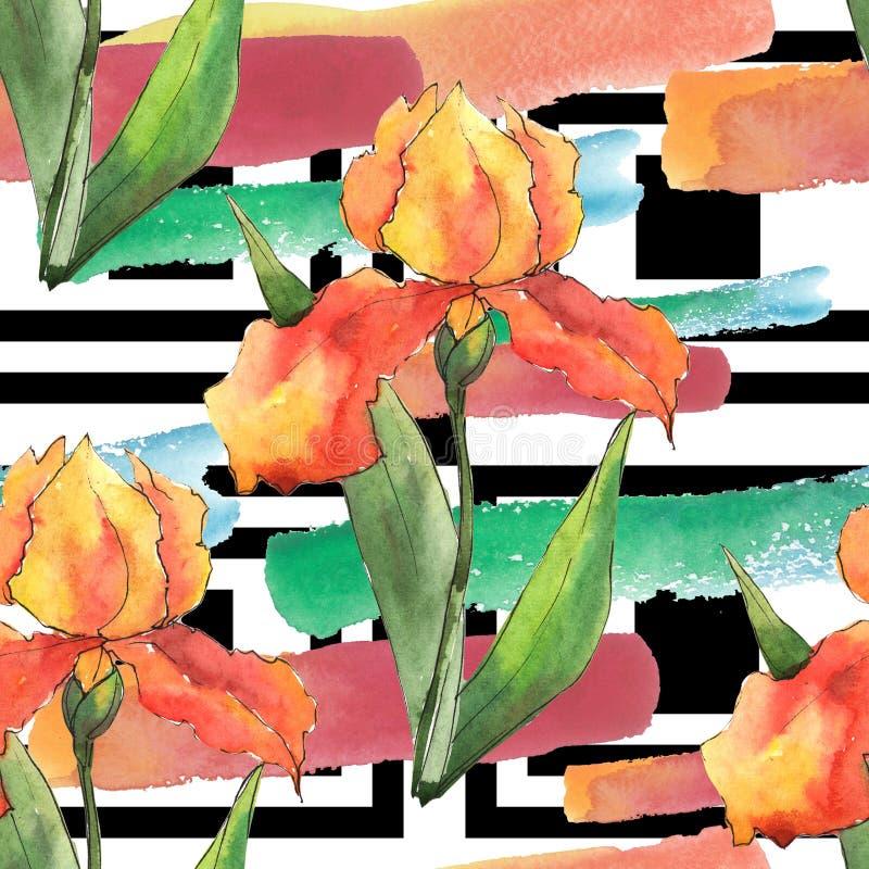 Iris coloridos Flor botánica floral Modelo inconsútil del fondo libre illustration