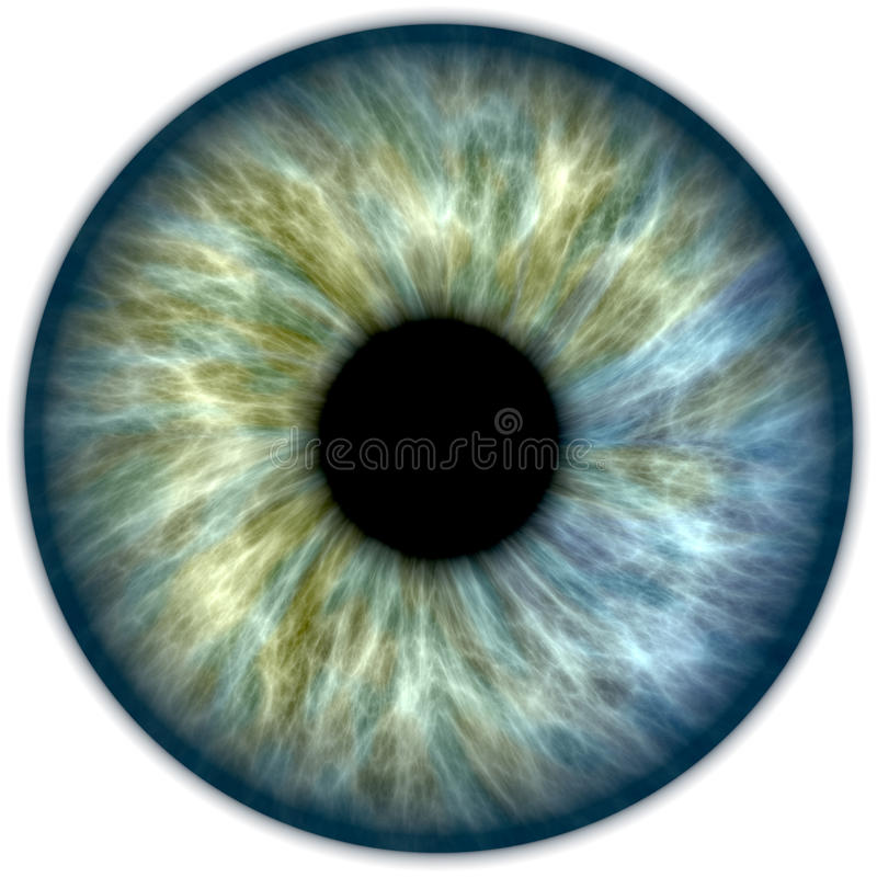 Iris de vert bleu illustration stock