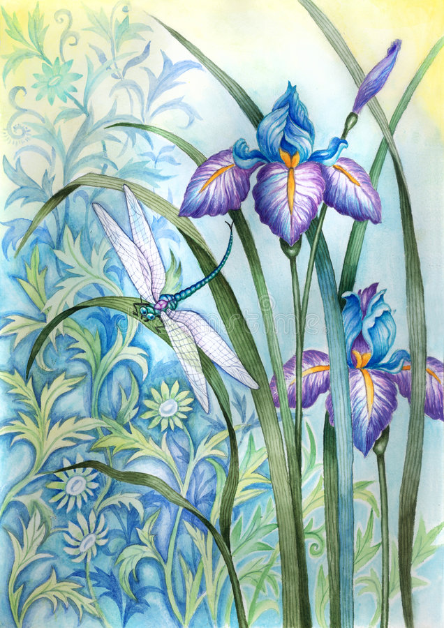 Iris flower and a dragonfly royalty free illustration