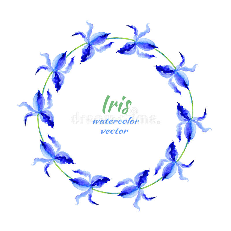 Iris flower hand drawn watercolor vector painting illustration, floral round frame, blue decorative herbal wreath for vector illustration