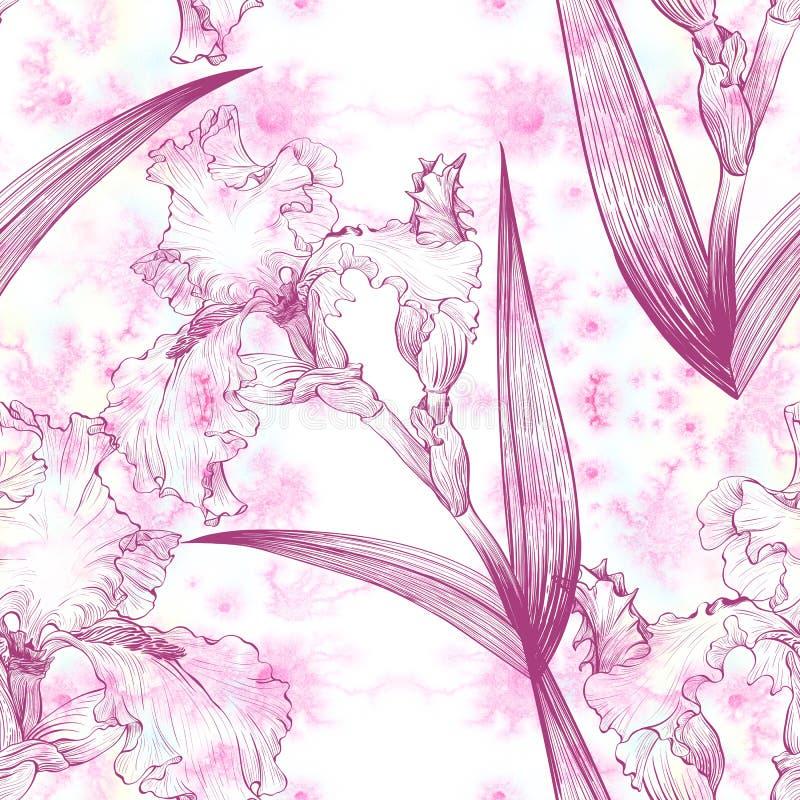 iris Papier peint de peinture d'aquarelle Configuration sans joint illustration stock