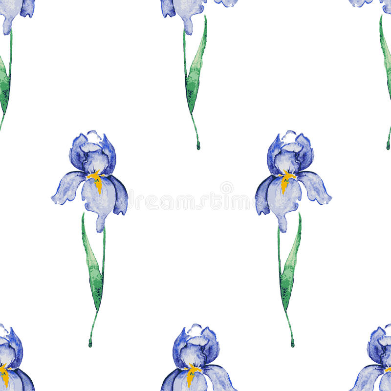 Iris seamless pattern. Floral watercolor background royalty free illustration