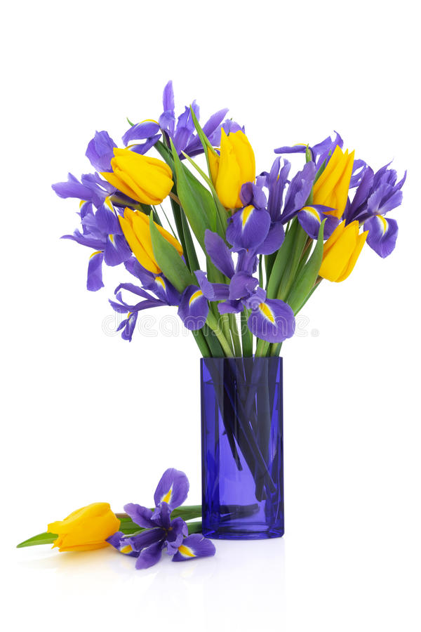 Download Iris and Tulip Flowers stock photo. Image of glass, vase - 19734794