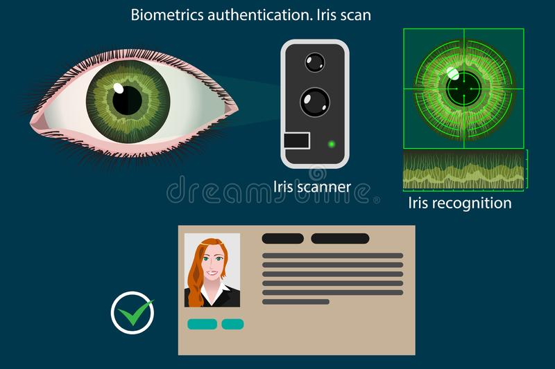 Irisaftasten - biometrisch verificatiemethodediagram, vectorinfographics stock illustratie