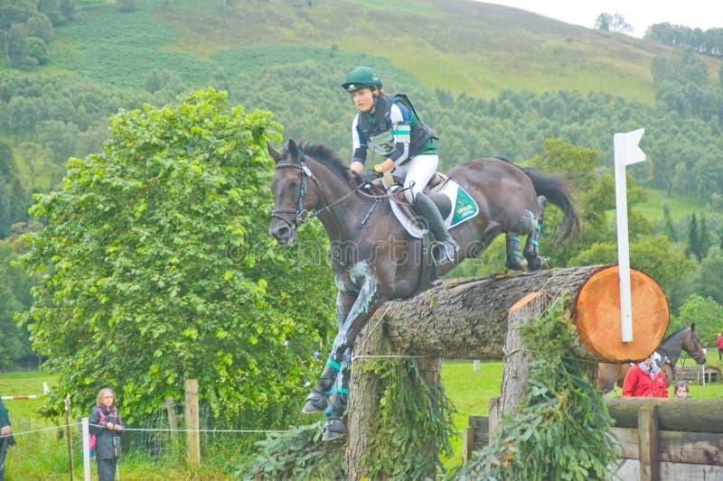 Irischer Mitfahrer: Internationale Pferden-Versuche 2011. stockbild