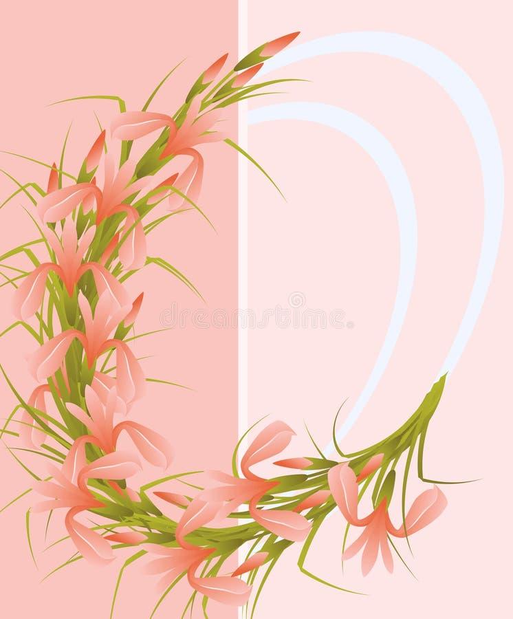 Irises. vector illustration
