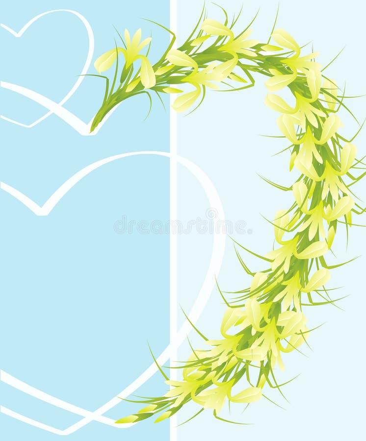 Irises. Stock Photography