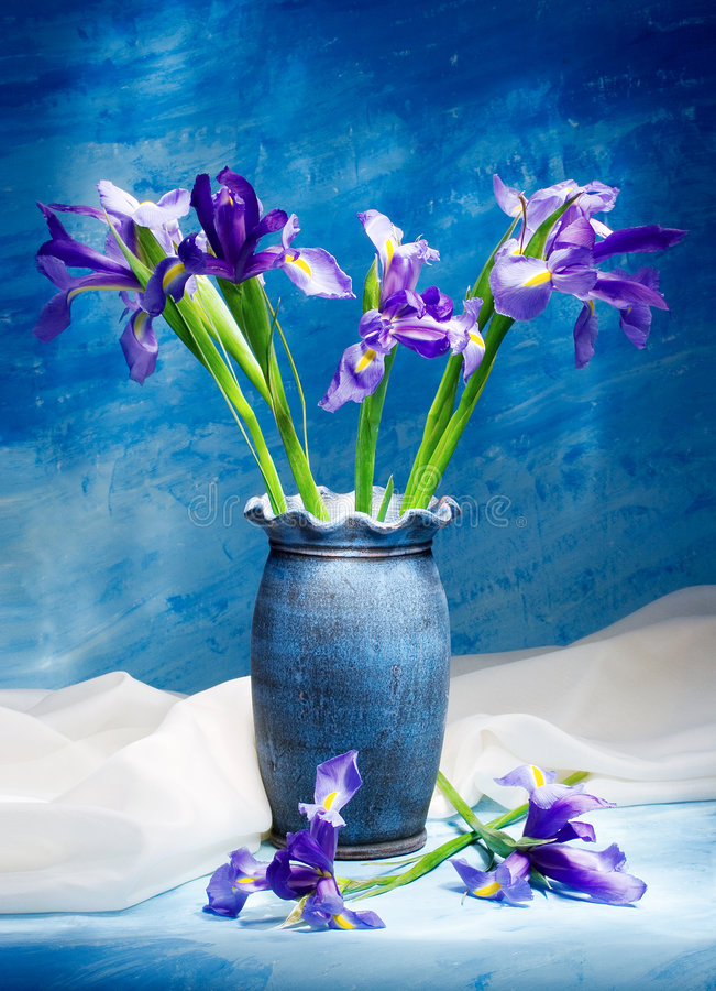 Free Irises Royalty Free Stock Photo - 642455