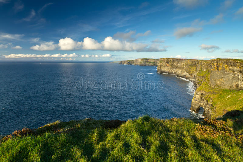 Download Irish Cliffs of Moher stock photo. Image of landscape - 24454354