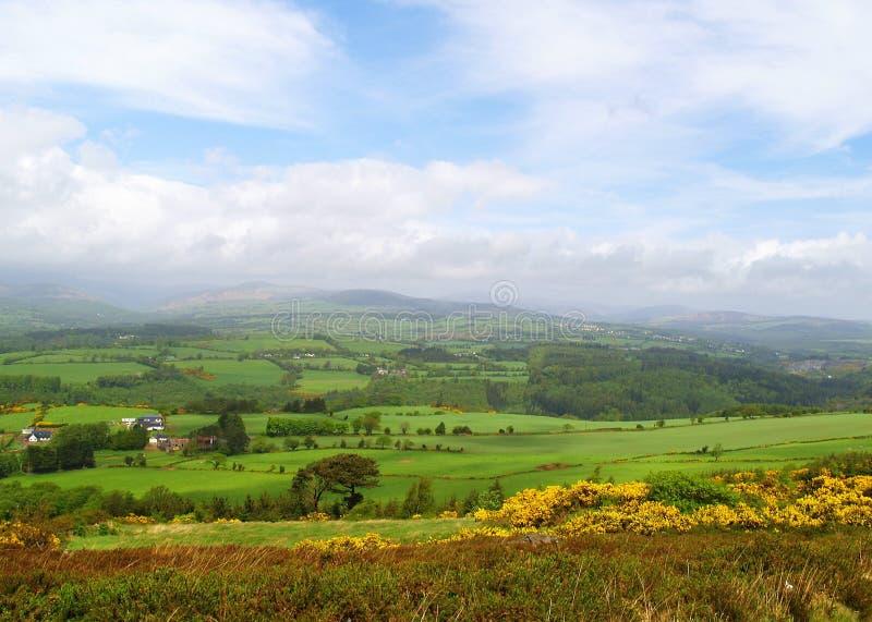 Irish Countryside stock images