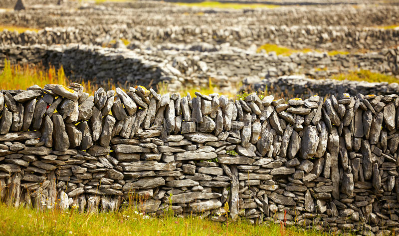 Download Irish fences stock image. Image of traditional, summer - 23888567
