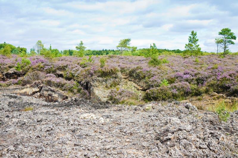 Irish peat bog landscape - Ireland - Europe.  royalty free stock photography