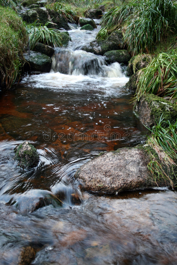 Irish Peat Stained River royalty free stock photos