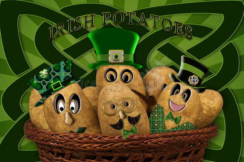 IRISH POTATOES royalty free illustration