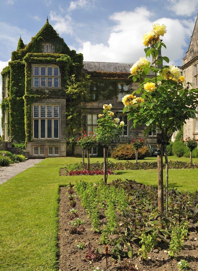 Download Irish rose garden stock photo. Image of past, ross, nature - 14865216