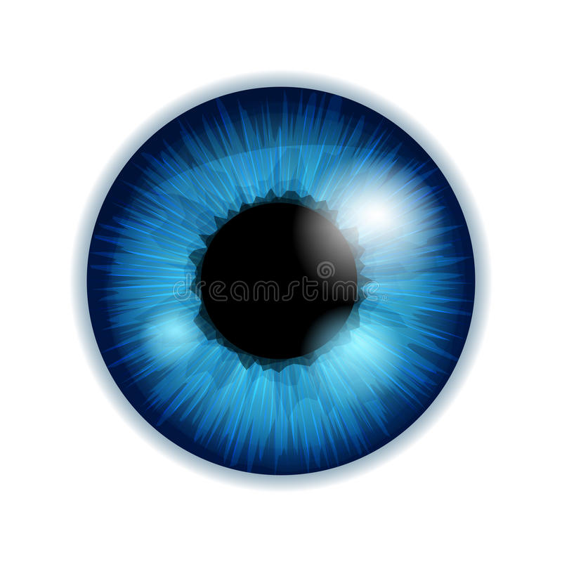 Irisschüler des menschlichen Auges - blaue Farbe vektor abbildung