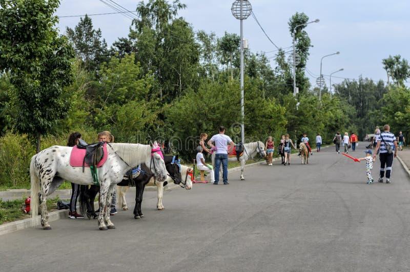 IRKOETSK, RUSLAND - JULI 15, 2019: De mensen lopen op straat dichtbij paarden royalty-vrije stock afbeeldingen