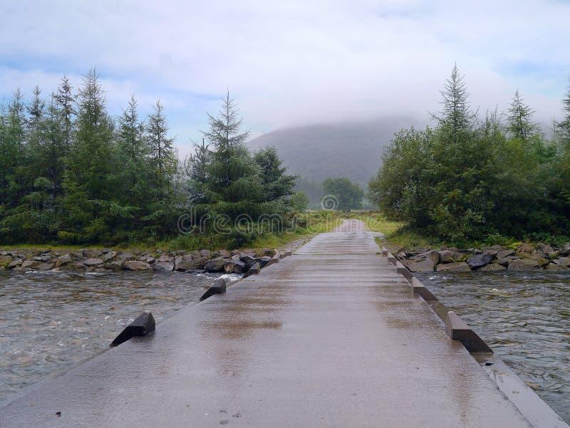 Irländsk bro i Ennerdale, sjöområde royaltyfri fotografi
