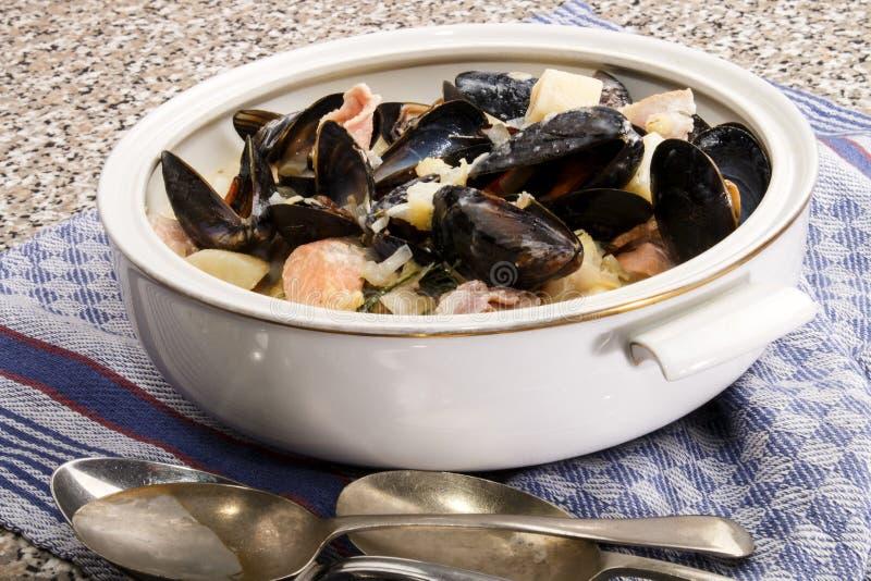 Irländsk fisksoppa med musslor i en terrine royaltyfri bild