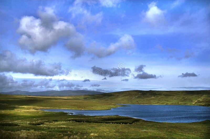 irländsk liggande fotografering för bildbyråer
