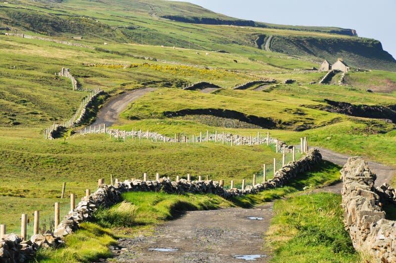 Irländsk liggande, Co. Clare royaltyfri foto