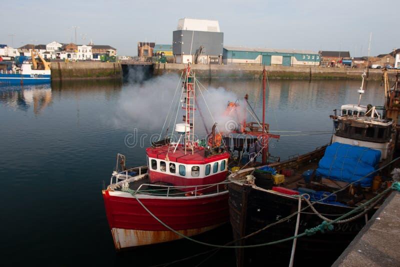 Irländska fiskebåtar i port av Howth, ståndsmässiga Leinster Dublin Ireland arkivbild