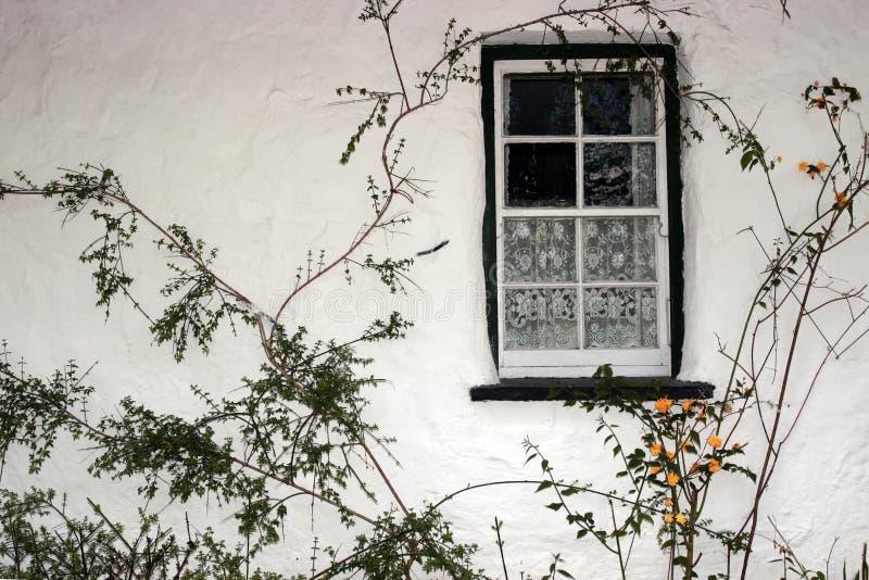 irländskt gammalt fönster 2 royaltyfria foton