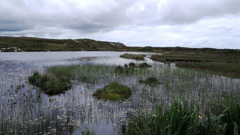 Irländskt stormregn royaltyfri foto