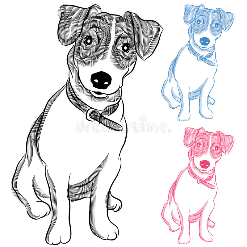 Irlandés Jack Russell Terrier Dog stock de ilustración