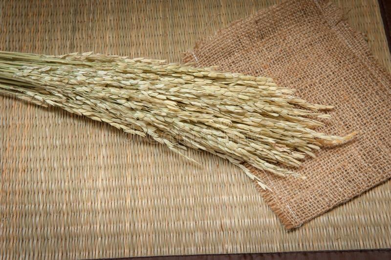 Irlandczyk na bambusowych matach zdjęcia stock