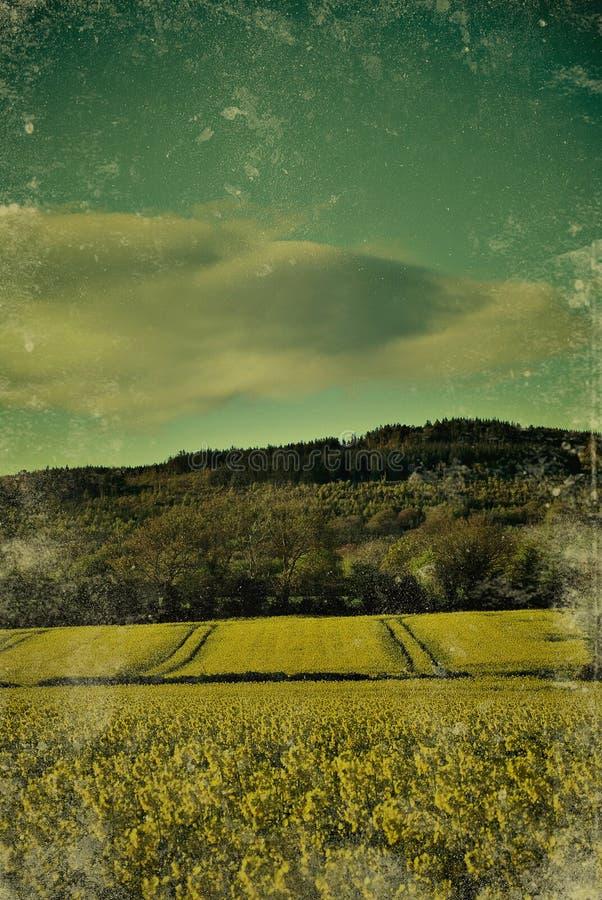 irlandczyka krajobraz obrazy stock