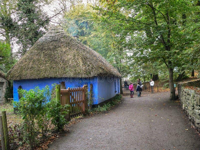 Irlandia ludu bunratty park obrazy royalty free