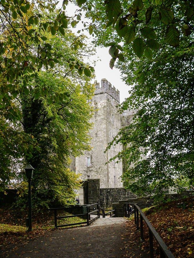 Irlandia Okręg administracyjny Clare Bunratty zdjęcia royalty free