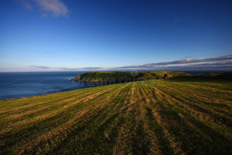 Irlands Küste stockfotografie