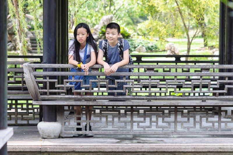 Irmã e irmão Portrait imagem de stock