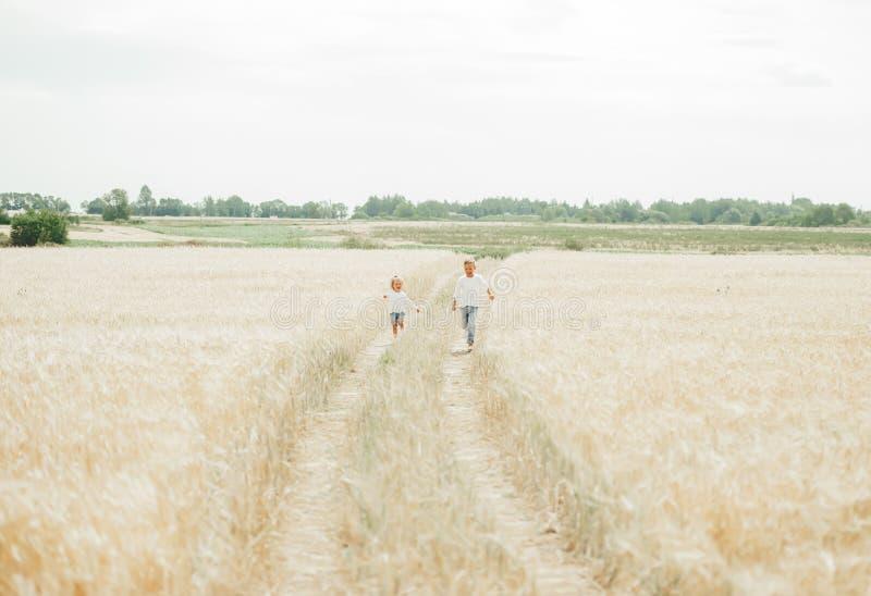 Irmão e irmã bonito que correm no campo de trigo na distância imagens de stock