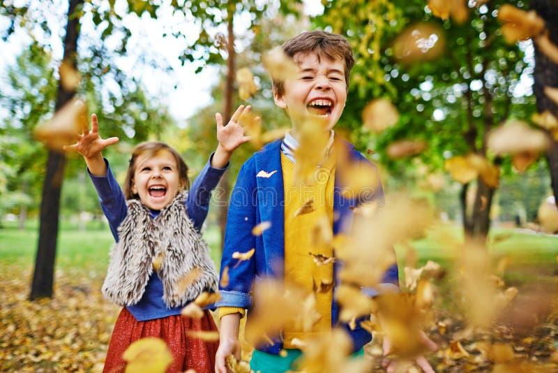 Irmão e irmã no parque do outono fotografia de stock royalty free