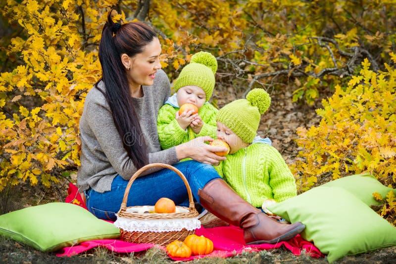 Irmão gêmeo dois pequeno com sua mãe na floresta do outono foto de stock