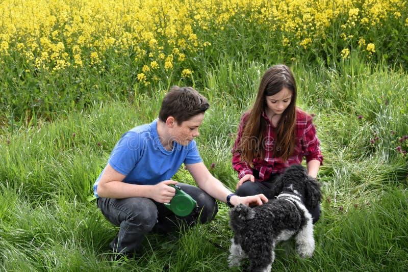 Irmãos e cão fotos de stock royalty free