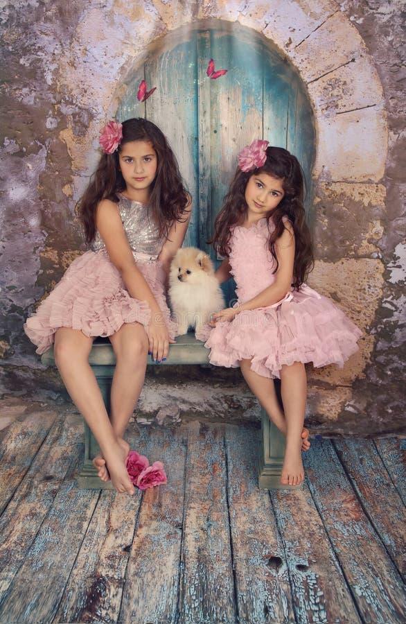 Irmãos e cachorrinho foto de stock royalty free