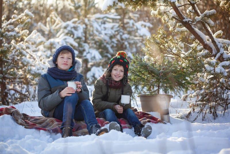 Irmãos felizes da família dois em uma caminhada do inverno que bebem fora o chocolate fotos de stock