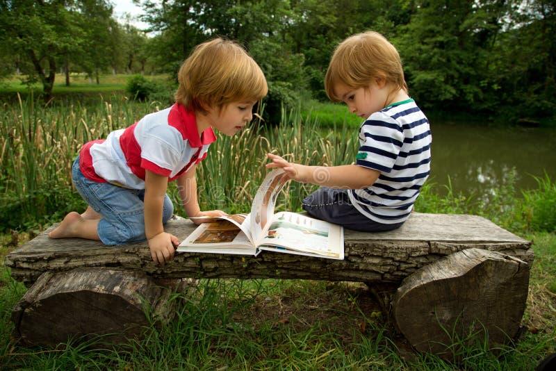 Irmãos gêmeos pequenos adoráveis que sentam-se em um banco de madeira e que olham imagens interessantes no livro perto do lago bo imagem de stock