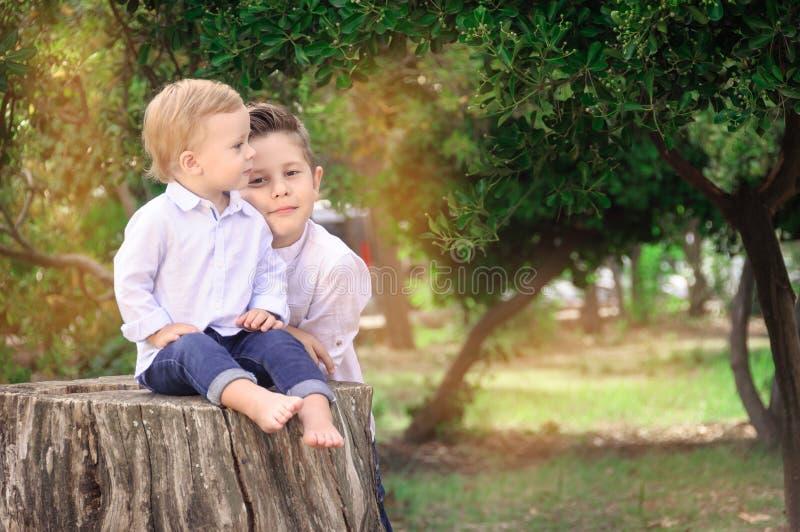 Irmãos no parque, júnior senta-se no coto, big brother ao lado de fotos de stock royalty free