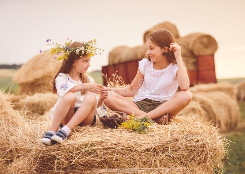 Irmãs bonitos no campo com cereja e flores fotos de stock royalty free