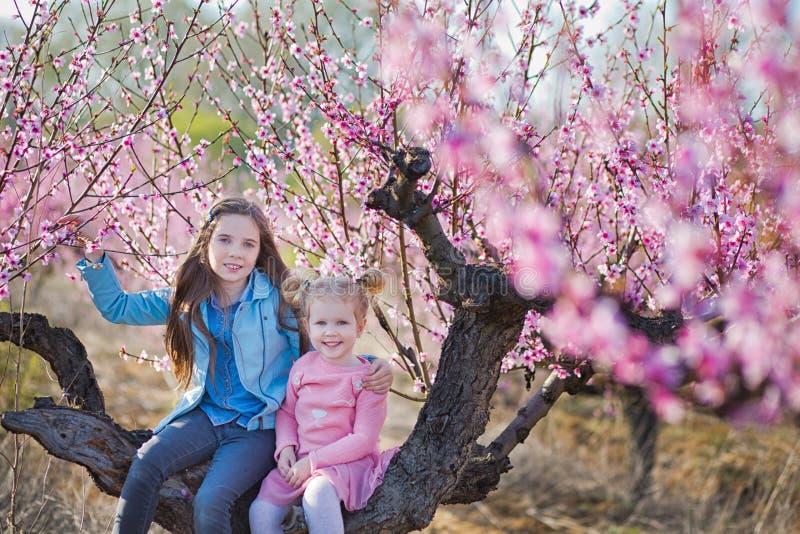 Irmãs morenos e louras vestidas à moda bonitas bonitos das meninas que estão em um campo da árvore de pêssego nova da mola com ro imagens de stock