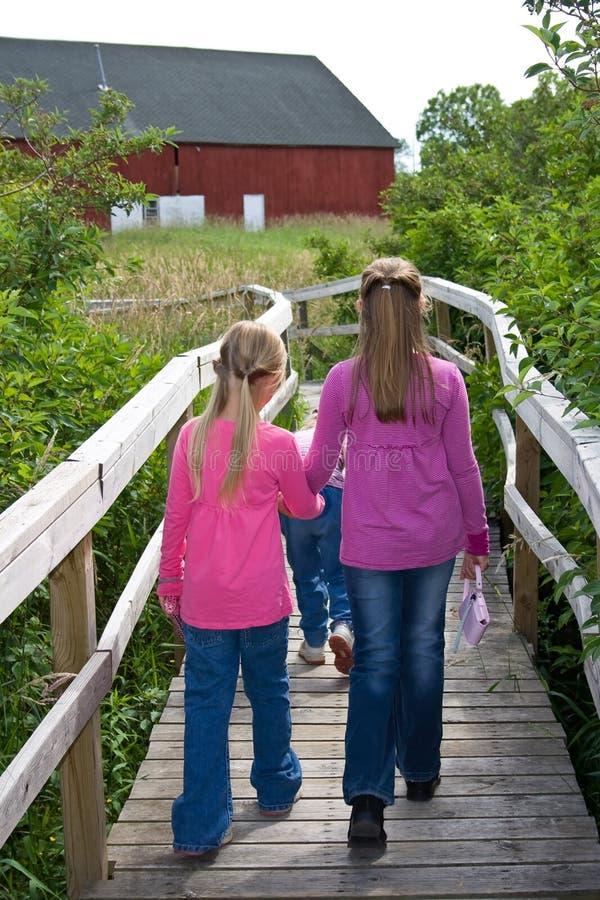 Irmãs que prendem as mãos que andam em um passeio à beira mar. fotos de stock