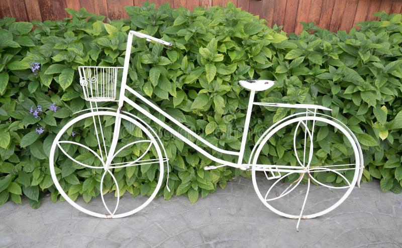 iron bicycle lean against plant wall stock photography